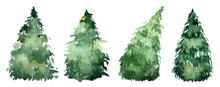 Set Of Watercolor Christmas Trees, Hand Drawn On A White Background. Christmas Card.