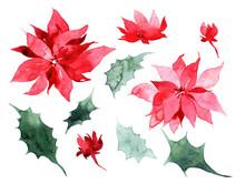 Watercolor Christmas Trees, Ho...