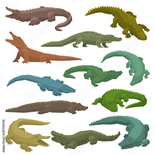 Crocodile vector cartoon crocodilian character of green alligator carnivore illustration animalistic set of dangerous amphibian predator with jaws isolated on white background Wall mural