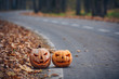 Two Halloween Pumpkins on the side of the road in the forest