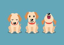 Vector Cartoon Character Labrador Dog Poses For Design.