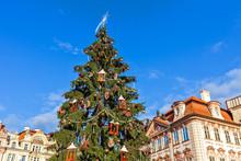 Christmas Tree Under Blue Sky ...