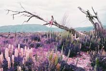 Woman Sitting On Dead Tree Lim...