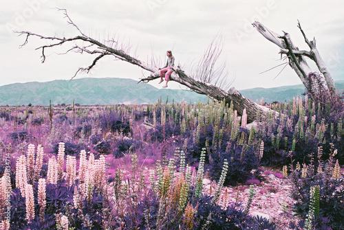 Woman sitting on dead tree limb above field of wildflowers