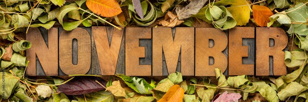 Fototapety, obrazy: November banner or greeting card