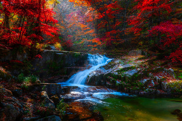 Panel Szklany Wodospad Autumn leaves and waterfalls at Baekryeong South Korea National Park