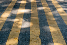 Many Yellow Traffic Lines On A...