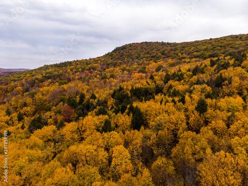 Obraz na plátně Drone photo of peak foliage upstate New York during the autumn fall season