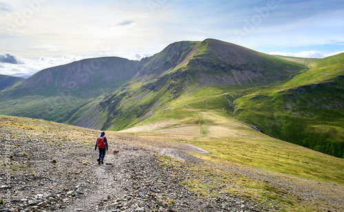 Canvas-taulu A hiker and their dog walking along a rugged path on a sunny day towards the summits of Crag Hill, Grasmoor and Sail in the Lake District, England, UK