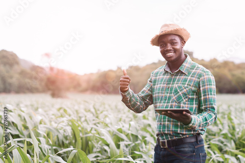 Photo African Farmer stand in the green farm with holding tablet