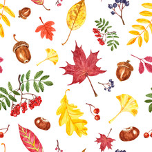 Cheerful And Colorful Autumn Seamless Pattern With Watercolor Leaves And Berries On White Background. Maple And Oak Leaf, Rowan Berry Branch, Acorn, Chestnut, Ginkgo Foliage. Fall Nature Illustration.