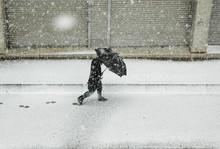 Hombre Caminando Bajo La Nieve...