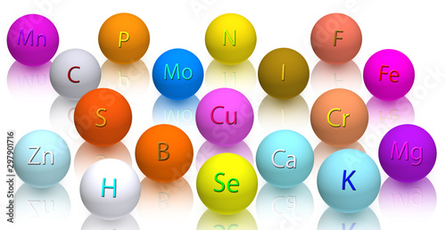 Basic micro nutrients and macro nutrients necessary for human health.3d image.