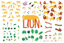 Vector Hand Drawn Flat Collection Of Lions And Tropical Plants Isolated On White Background. Cute Animal Illustration. Exotic Nature. Wild Flora And Fauna. Big Cat. Predator.