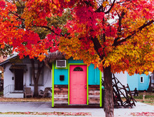 A Colorful Little House With A Tree In Autumn