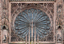 Rose Cathédrale De Strasbour
