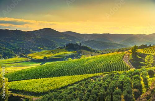 Fotografía  Radda in Chianti vineyard and panorama at sunset. Tuscany, Italy