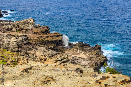 Obraz na plátne  Nakalele Blowhole in Maui