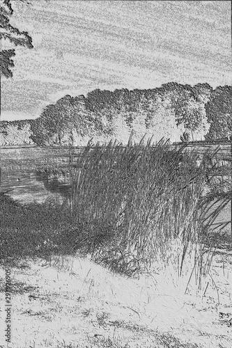 Fotografía Lake Shoreline with Clump of Grass, Lake Chickamauga, Harrison Bay State Park, T