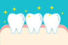健康な歯のキャラクターのイラスト Character Illustration Of Healthy Tooth And Gum