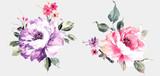 Fototapeta Kwiaty - Flowers watercolor illustration.Manual composition.Big Set watercolor elements.
