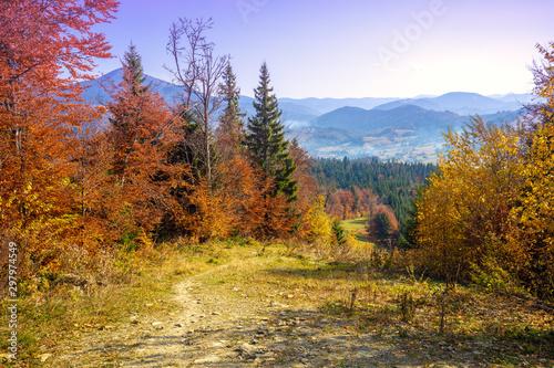 Obraz Autumn in the mountains. Panoramic view of the mountains and the valley in autumn. Beautiful nature landscape. Carpathian mountains. Bukovel, Ukraine - fototapety do salonu