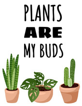 Plants Are My Buds Postcard. P...