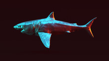 Silver Great White Shark With ...