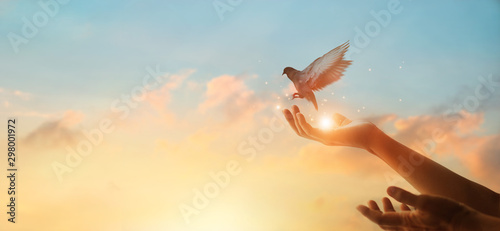 Fotografie, Obraz Woman praying and free bird enjoying nature on sunset background, hope concept