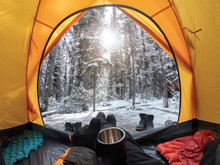 Camping With Hand Holding Cup ...