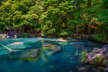 Mountain Lake Blausee In The J...