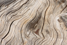 Wood Surface Of The Sun Cast L...