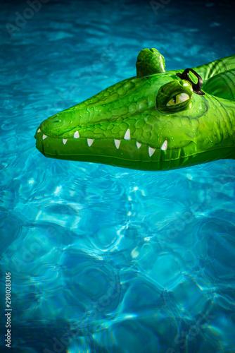 Door stickers Crocodile Krokodil im Pool