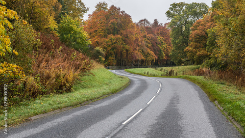 Autumn colours on winding road Fototapeta