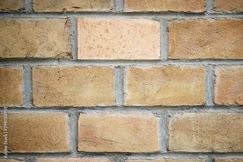 Old brick wall Canvas Print