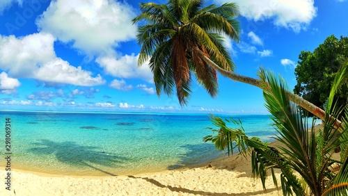 exploring tropical island paradise