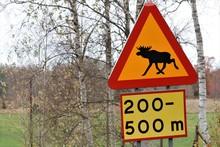 Moose Crossing Warning Sign, Signal Colors