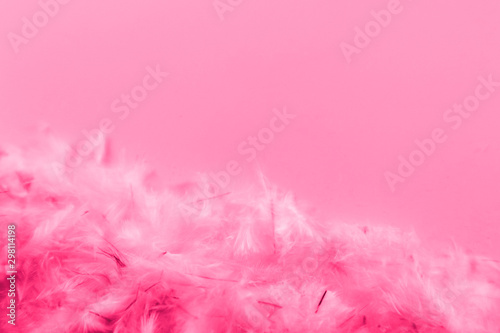 Beautiful abstract blue and purple feathers frame on darkness background and colorful soft white pink feather portrait frame texture - 298114198