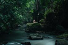 Man Rest In A Tropical Rainfor...