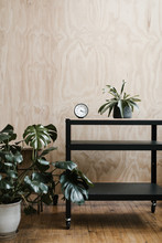 Utility Cart With Plant And Analog Clock Against Plywood Backdrop Wall