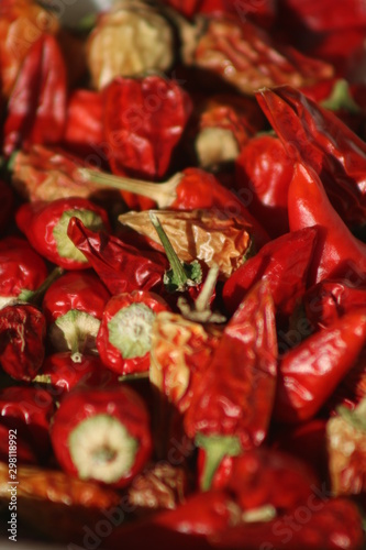some like it hot: growing colourful peppers, harvested peppers Canvas-taulu