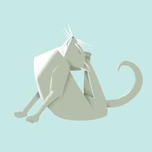 Grey Cat Yoga