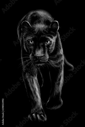 Panther Wallpaper Mural