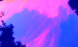 canvas print picture - Heavenly Pink Sky Above The Trees