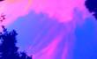 Leinwanddruck Bild - Heavenly Pink Sky Above The Trees