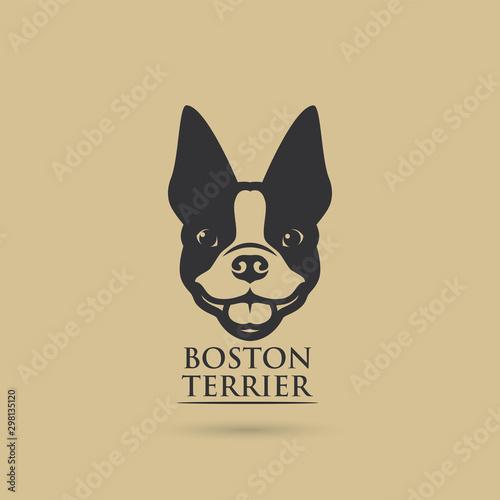 Obraz Boston terrier dog - vector illustration - fototapety do salonu