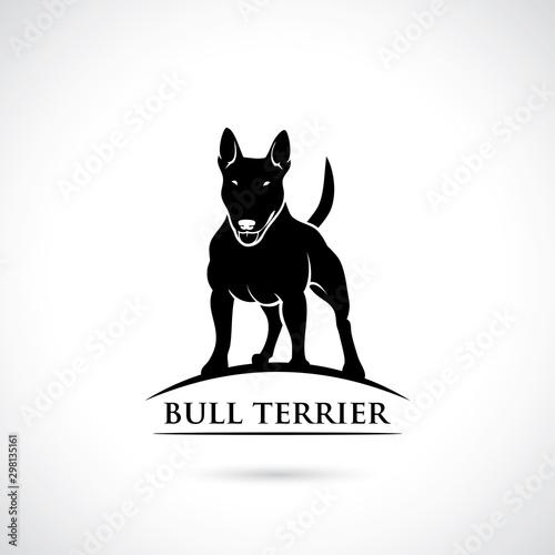 Fotografia Bull Terrier dog - vector illustration