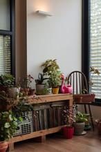 Tranquil Interior