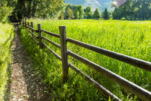 Wooden Fence By Green Field