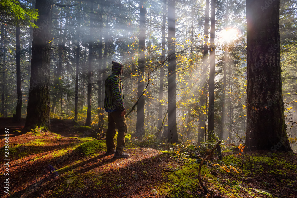 Fototapety, obrazy: Adventure Man enjoying the Beautiful Canadian Nature View of the Forest during a foggy morning sunrise. Taken in Sloquet Hot Springs, Located North of Vancouver, British Columbia, Canada.